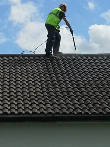 roof moss removal and cleaning
